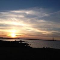 Summer Sun: The sunset was pretty amazing tonight