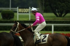 Day at the Races: How do jockeys choose their bright colours?