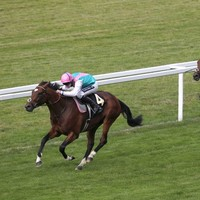 WATCH: Frankel hangs on to maintain unbeaten record