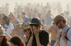 Second music fan dies at Bonnaroo festival in US