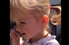 Irish 2-year-old has perfected her phone conversations already