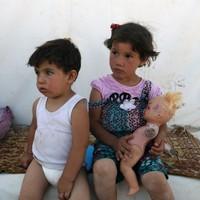 Syrian rebels storm Sunni village, leaving 14 dead