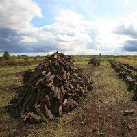 Appeal issued over unauthorised bog cutting