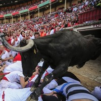 Pamplona bull run sends seven to hospital