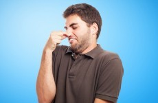 Smelling flatulence could help you live longer, scientists claim