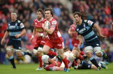 Welsh rugby at crisis point as peace talks break down