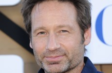 David Duchovny has written a book about farm animals uniting Israel and Palestine