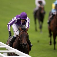 Favourite Fame and Glory triumphs at Royal Ascot to secure Gold Cup for O'Brien