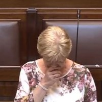'I never fought with her over toys': Here is Anne Ferris's moving Dáil speech about her sister