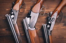 355 guns stolen in Ireland last year - and 53 reported lost