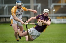 'He must be living in the gym' - Kilkenny captain Lester Ryan is keeping tabs on his Wexford cousin