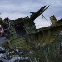 In pictures: The MH17 crash site