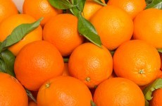 The world's citrus is being destroyed - here's what scientists are doing about it
