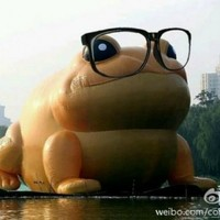 China wants to censor a giant inflatable toad