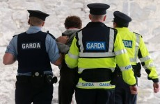 296 garda retirements in 2013 and 100 station closures