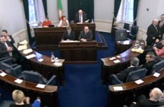 Nine months after it was saved, the Seanad is finally being reformed