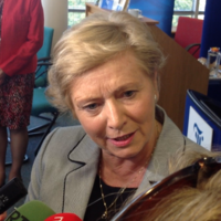 Fitzgerald says UN report will be examined but Ireland has its own constitutional position