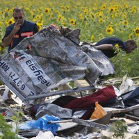 There are still human remains at the MH17 crash site
