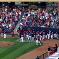 10 players ejected after bench-clearing minor league baseball brawl
