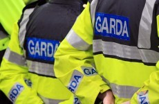 These are the questions gardaí are calling door-to-door asking members of the public