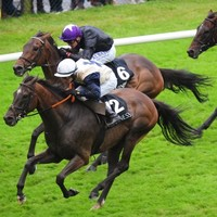 All the results and pics from Day 5 of the Galway Races