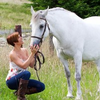 The ISPCA wants horse owners to tackle over-population