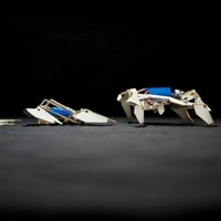 These freaky self-assembled robots build themselves from flat pack