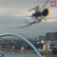 Giant spider photobombs BBC Scotland breakfast newscast