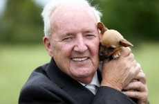 Brighten up your Thursday by looking at these pictures of Bill O'Herlihy and a puppy