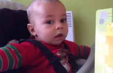 Baby has adorable reaction to hearing lion roar for the first time
