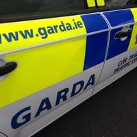 Young pilot Denis Metcalfe dies in single car Limerick crash