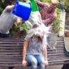 RTE presenter Jenny Greene took the Ice Bucket Challenge