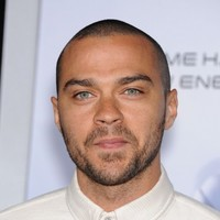 Grey's Anatomy's Jesse Williams on Ferguson: 'I've never seen a white body left in the street for 4 hours'