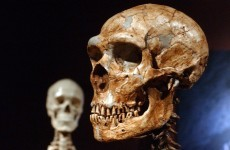 Humans and Neanderthals lived side-by-side for 5,000 years. We share DNA. Do the maths.