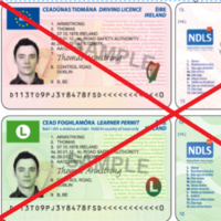 """Long tail-backs and """"unacceptable delays"""" at Dublin driver licence centre"""