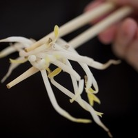 Don't eat raw bean sprouts: a warning from the Food Safety Authority