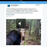 People on Twitter are confusing David Attenborough with Richard Attenborough