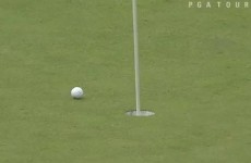 Rory was this close to a hole-in-one at the Deutsche Bank yesterday