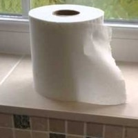 This dad's excellently sarcastic toilet-roll changing tutorial is going super viral