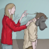 Living with a 'black dog': An animated guide you really should watch