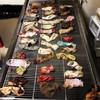 Vet removes 43 socks from sick dog's stomach