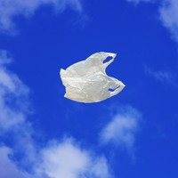 California to become first US state to ban plastic bags