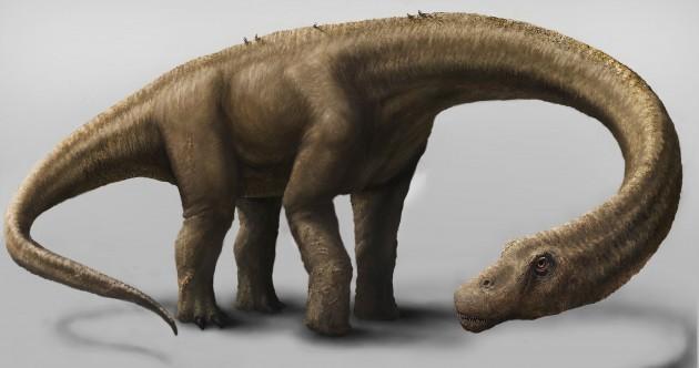 New dinosaur species bigger than T-rex and heavier than seven elephants