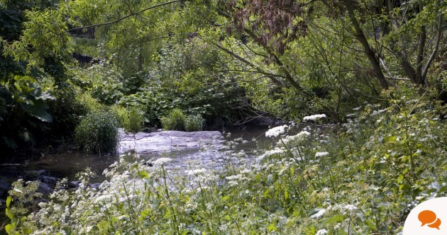 Opinion: I've never been so excited about Dublin's future – a Dodder Greenway would be incredible