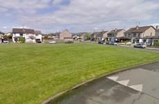 Probe into death of man in Garda custody