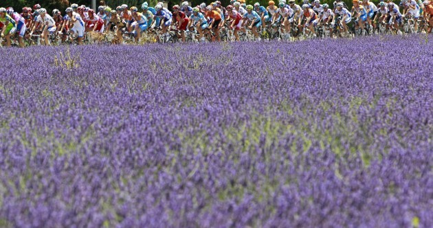 Who are the front-runners for this year's yellow jersey?