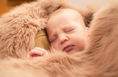 Sleeping on animal fur can reduce children's chances of getting asthma