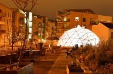 Community garden turns derelict Fatima Mansions site green