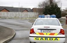 Guns found at two Dublin houses in organised crime raid