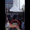 Runaway pig goes on 'rampage' at Waterford street festival